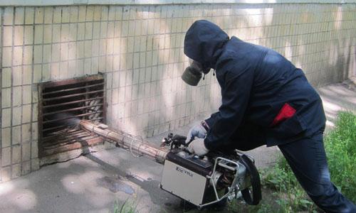 Дератизация в Улан-Удэ