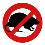 Уничтожение мышей и крыс